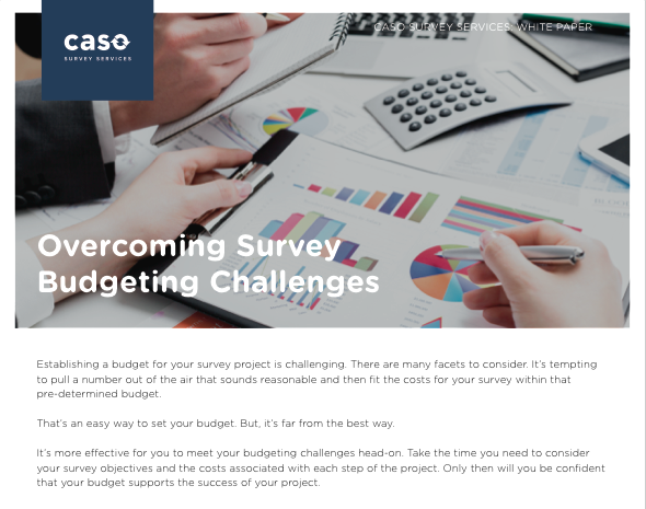 White Paper: Overcoming Survey Budgeting