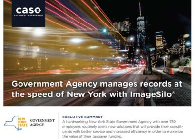 NYS Government Agency Case Study